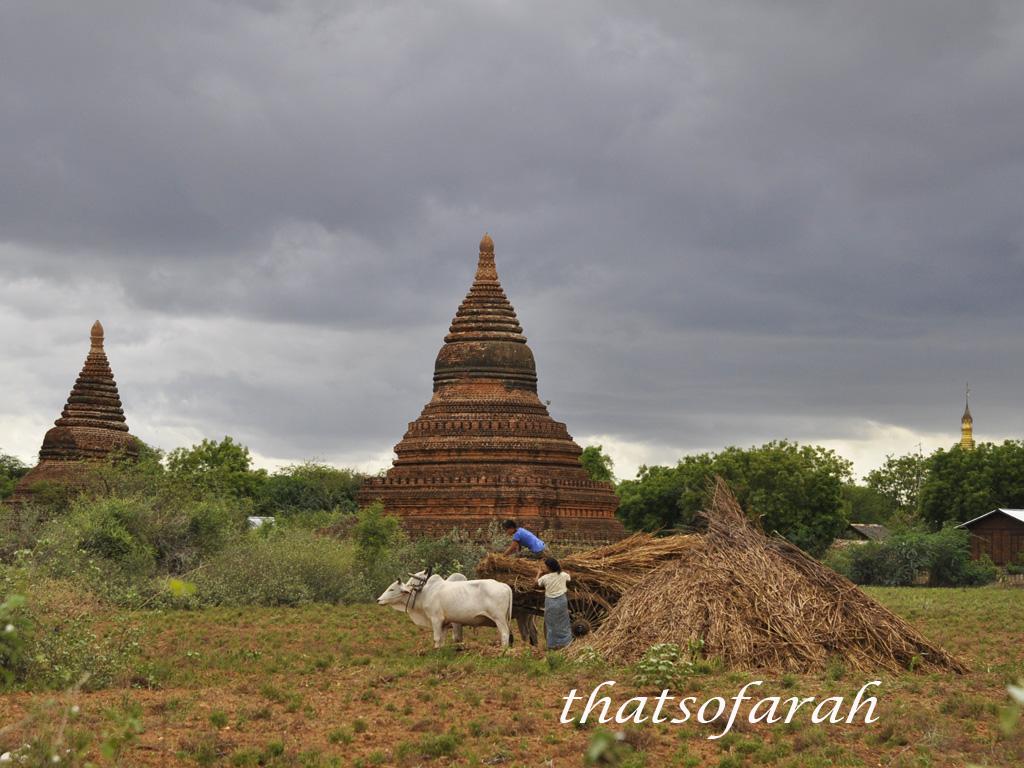 Bagan_6