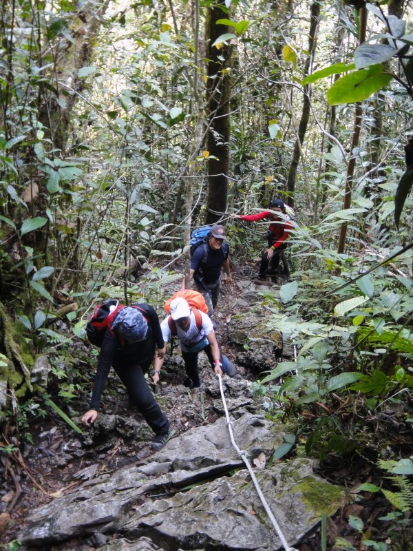 Mulu Pinnacles Trail
