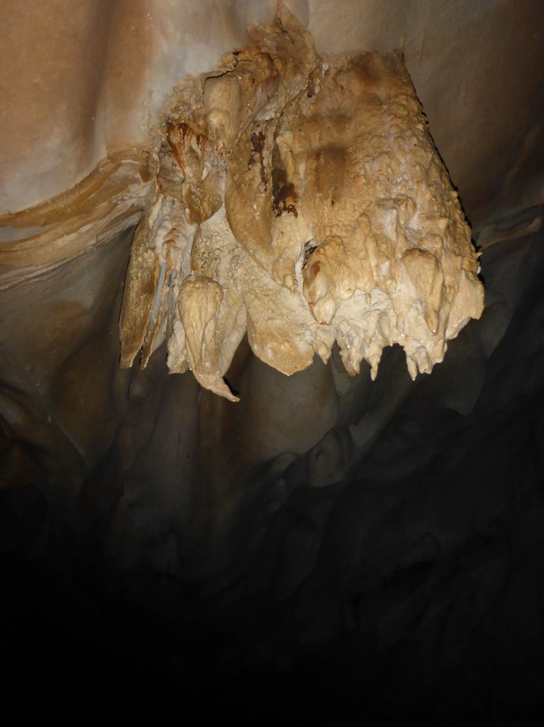 shark toothed stalactite