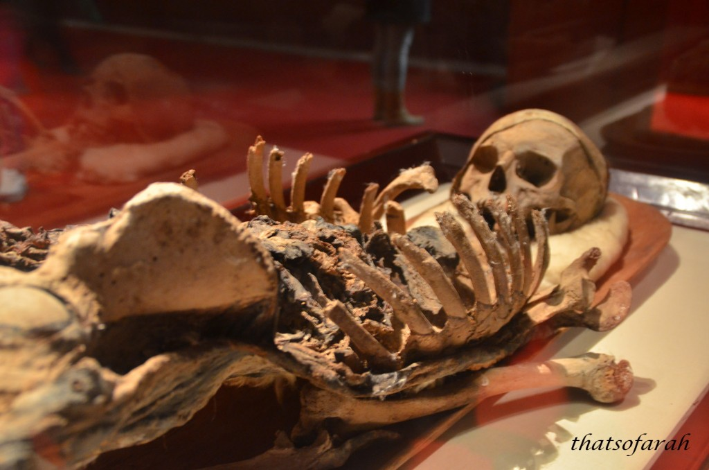 Mummy of King Tapnit