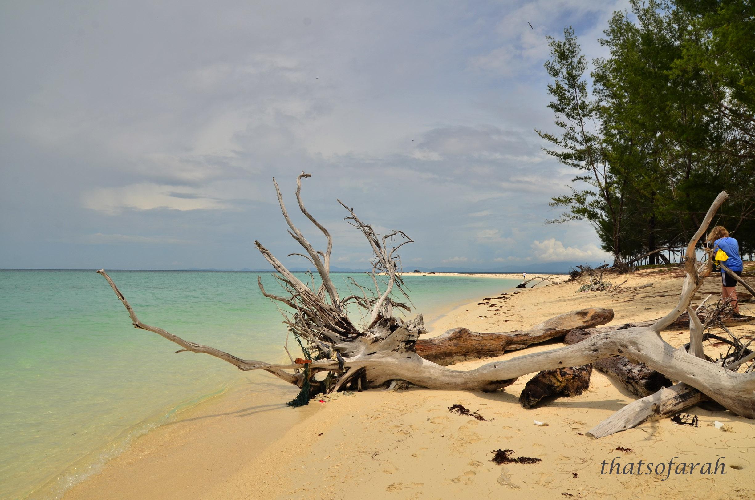Mantanani Island Once A Dugong Wonderland Tendencies Kaos Beach Life Perak M