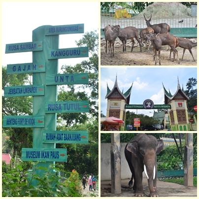 Taman Marga Satwa Bukittinggi