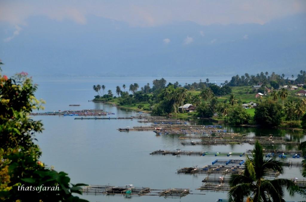 Karamba Lake Maninjau