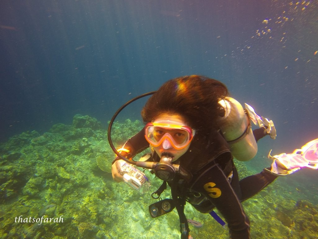 Diving Sipadan