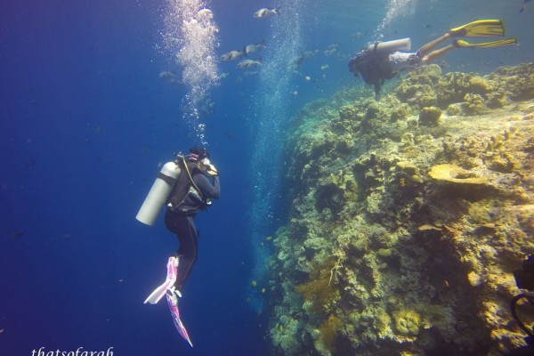 5D4N Borneo Divers Mabul Resort – Part 2