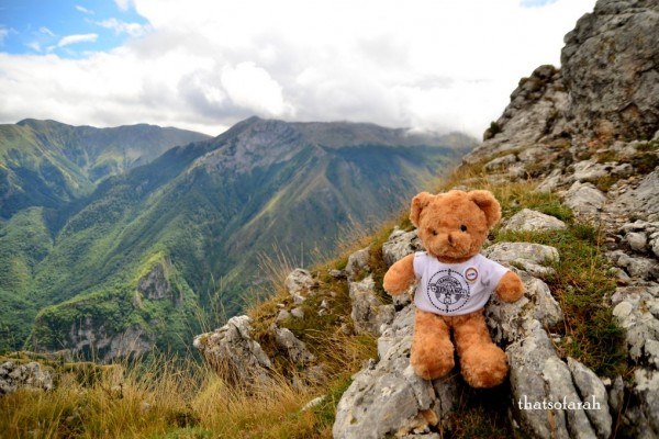 Travelling Beruang - Not Just a Teddy Bear