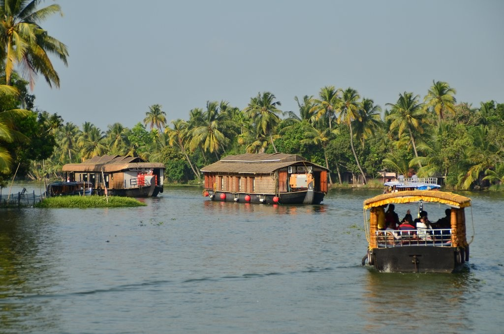Everyone Must Visit KErala backwaters once in a lifetime