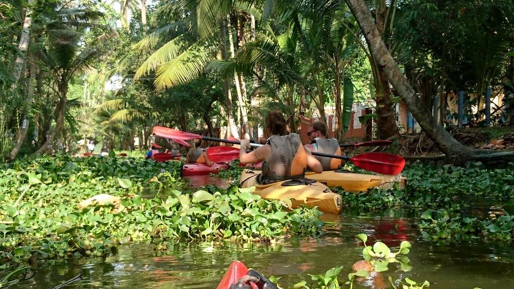 Kayaking through backwaters of Kerala