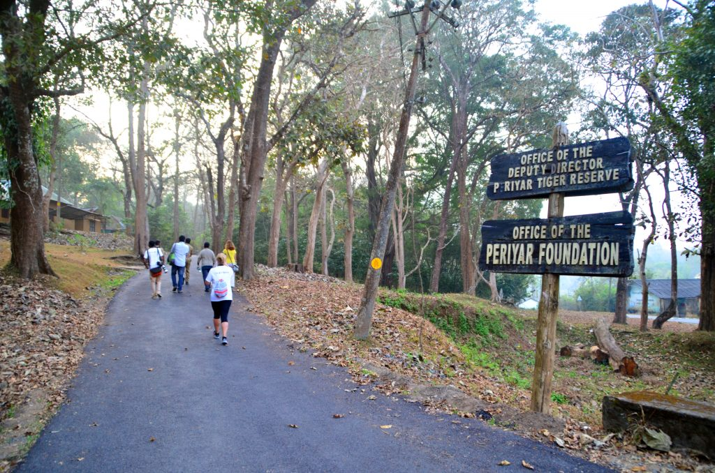 Nature Walk at Periyyar Tiger Reserve