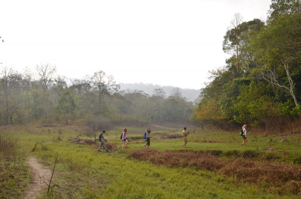Nature Walk at Periyar Tiger Reserve