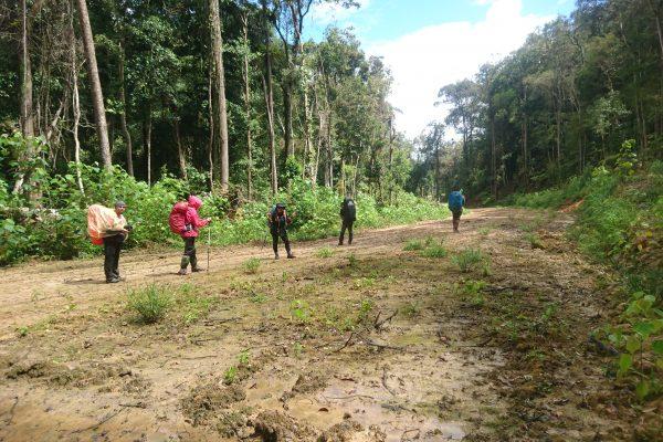 My Sarawak Adventures -Hiking Gunung Murud (Part 2)