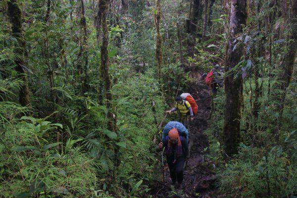 My Sarawak Adventures – Hiking Gunung Murud, Sarawak (Part 1)